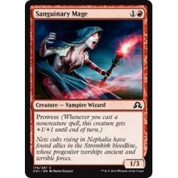 Sanguinary Mage