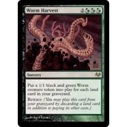 Worm Harvest