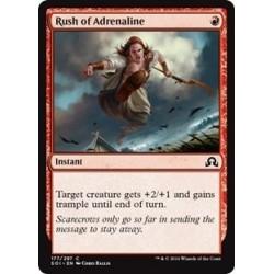 Rush Of Adrenaline