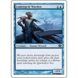 Lumengrid Warden