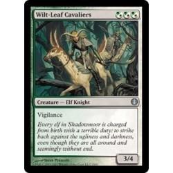 Wilt-leaf Cavaliers