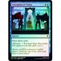 Unexplained Vision (foil)
