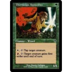 Thornscape Apprentice