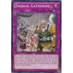 Zoodiac Gathering