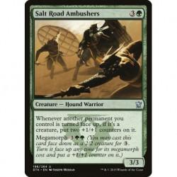 Salt Road Ambushers