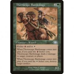 Thornscape Battlemage