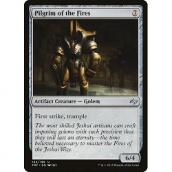 Pilgrim Of The Fires