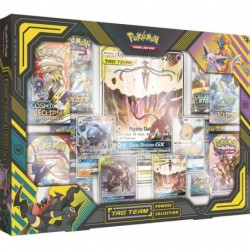 Pokemon Tag Team Powers Collection Master Case