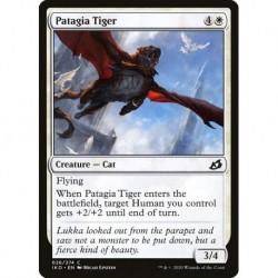 Patagia Tiger