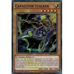 Capacitor Stalker (cibr-en002)