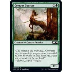 Centaur Courser