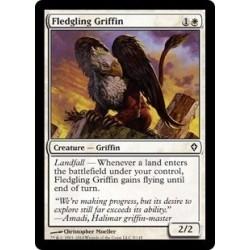 Fledgling Griffin