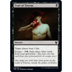 Fruit Of Tizerus