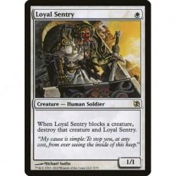 Loyal Sentry