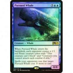 Pursuit Whale Foil