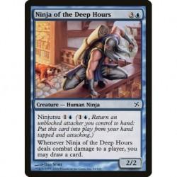 Ninja Of The Deep Hours
