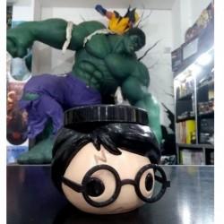 Mate Pulido Harry Potter
