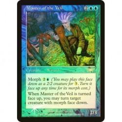 Master Of The Veil (foil)