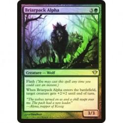 Briarpack Alpha (foil)