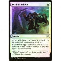Swallow Whole (foil)