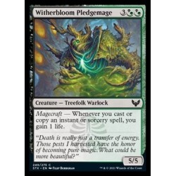 Witherbloom Pledgemage