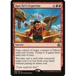 Kari Zev´s Expertise